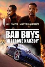 Bad Boys 3 (pracovní název)